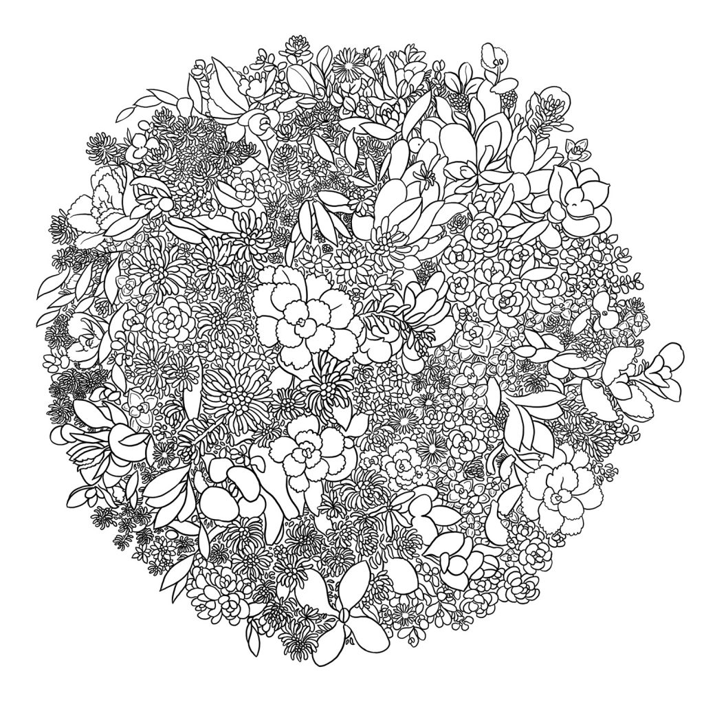 Succulent Love Colouring Page